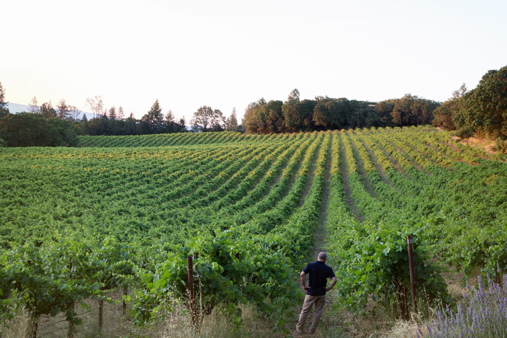 Tony Arcudi in Vineyards. Photo Credit Megan Reeves