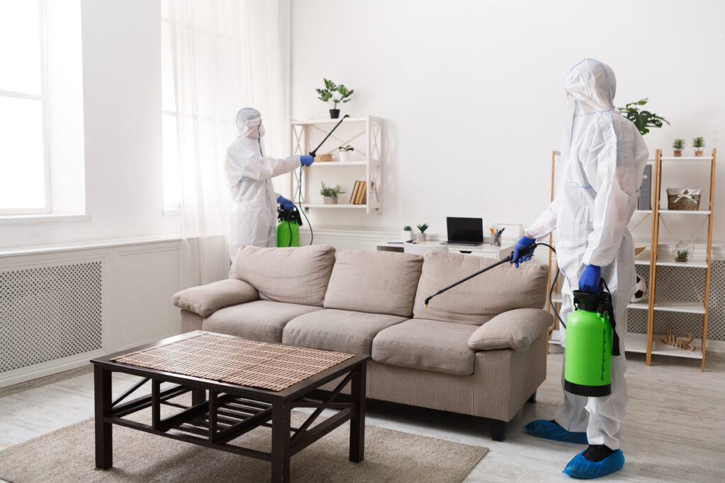 Professional cleaning with disinfectant spray of all home