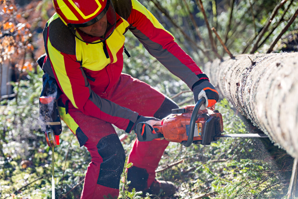 How to Find Success as a Wood-Cutting and Tree Service